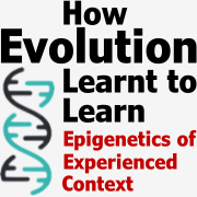 How Evolution learnt to learn